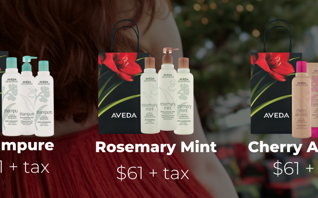 JR Gift Guide- Aveda All Wrapped Up